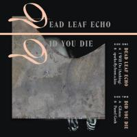Dead Leaf Echo at Philly's Ortleib's Lounge